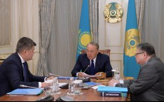 Meeting with Elzhan Birtanov, Minister of Health